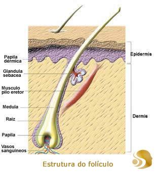 produto para nao crescer barba